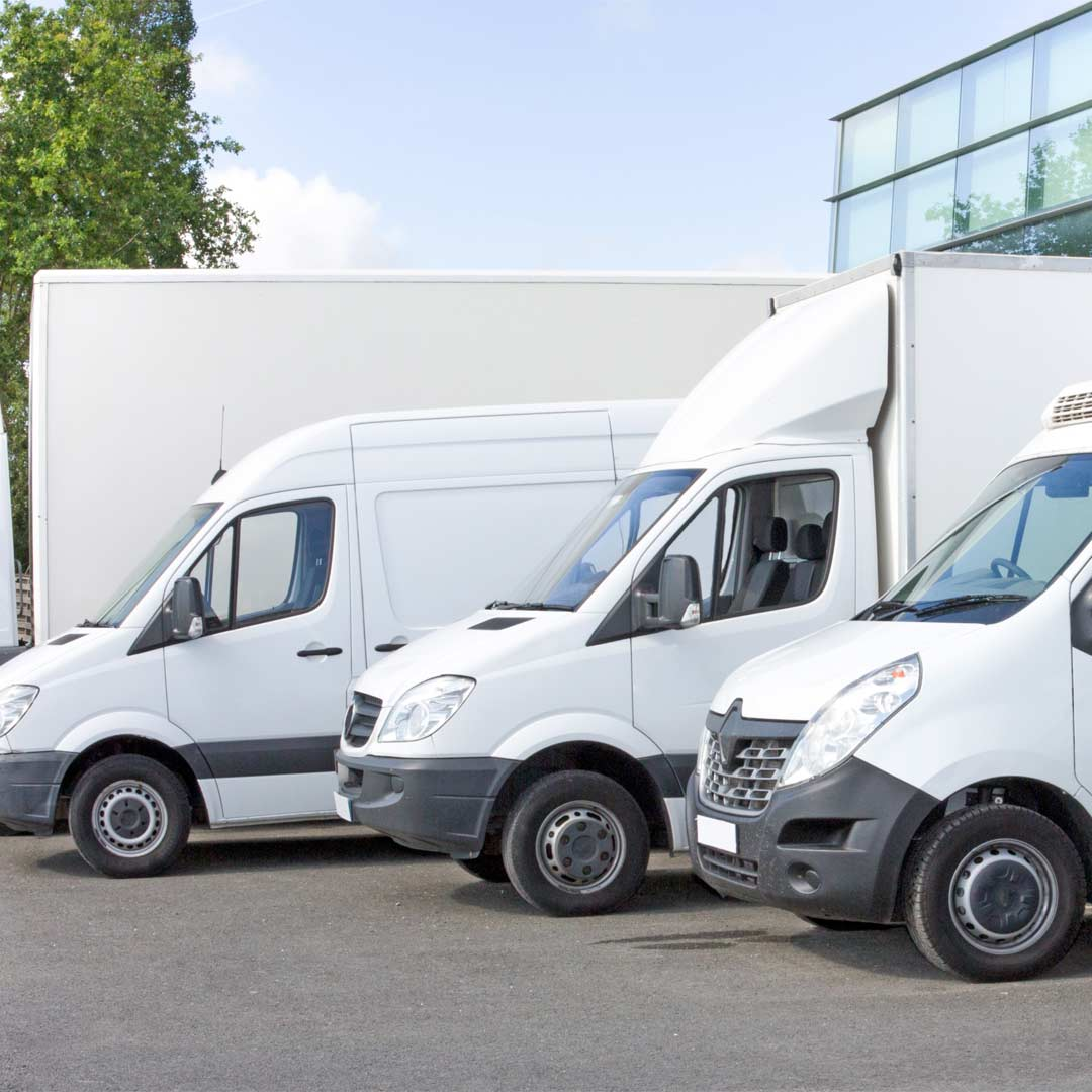 Reacton-Transporation-and-Logistics-Vans-01